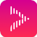 网易海豚音官方版app下载 v1.0.1