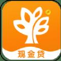 榕树分期贷款