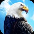 老鹰生存模拟器游戏