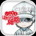 无论何时都要工作细胞官方大发快三彩票中文版 v1.0.1