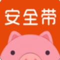 安全带贷款官方版入口app v1.0