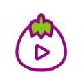 茄子TV破解版app官方版免费下载 v0.0.6