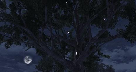 明日之后花瓣树在哪 花瓣树位置介绍[多图]