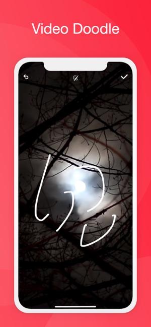 块猫视频app苹果版iOS软件下载图片1