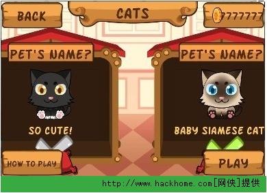 虚拟的猫-可爱的动物游戏/my